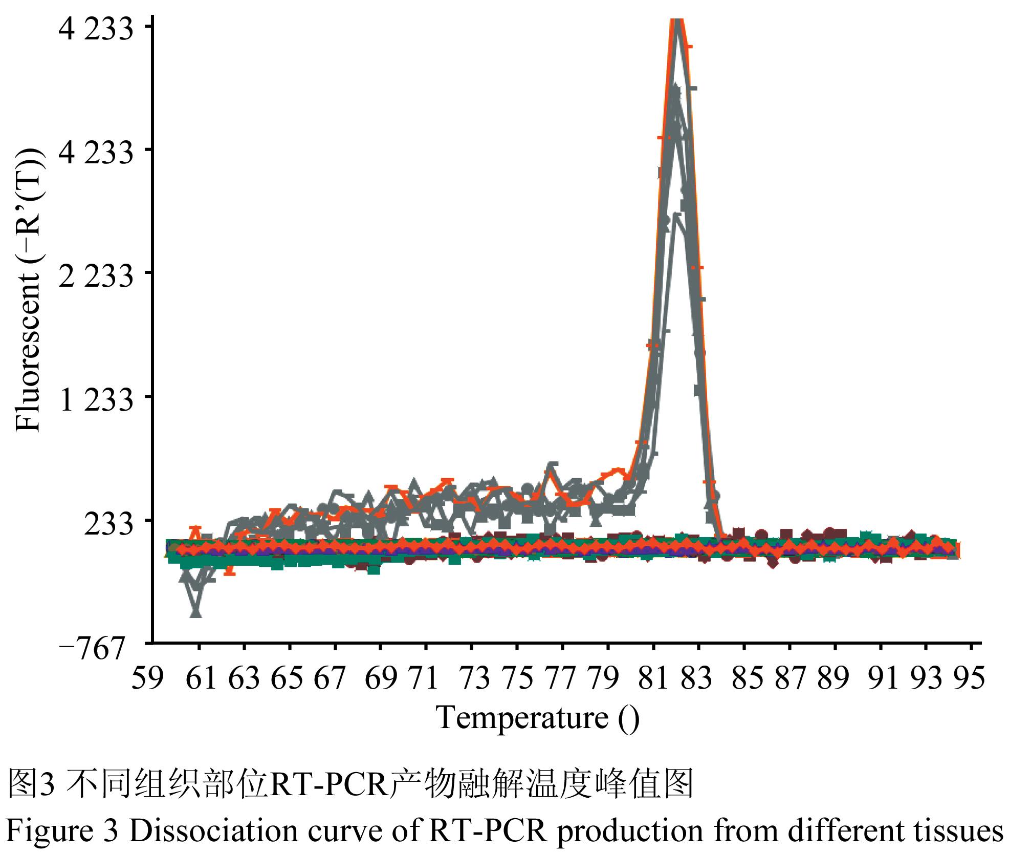 高邮鸭npy (neuropeptide y)基因cdna克隆,表达及序列